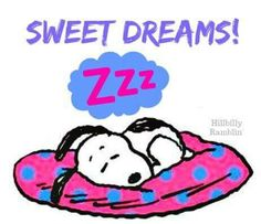 💤 Sweetest of dreams!