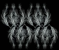 Feathers by Sarah Clement, via Behance