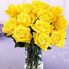 Цветы желтого цвета