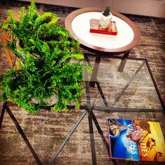 Mesa de centro..... E vaso de planta, combinação perfeita!