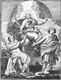 Incisione di G. Petroschi per il libro del Tria (1741)