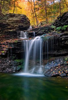 Rickett's Glen State Park. I go there at least once a year. There's something like 22 waterfalls on a 4 mile hike.