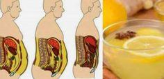 Gli infusi di piante naturali sono molto efficaci nel trattamento di malattie, ma sono anche molto utile quando attivare dimagrimento bruciare il grasso corporeo immagazzinato e eliminare l'eccesso di grasso localizzato. Questi alimenti hanno...
