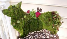 Topiaries add intrigue to any yard...and a little whimsy :P
