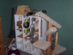 Turn a shoe rack into a playground for your rats or other small rodents! Drill large holes in several shelves and walls of the shoe rack and drill a small hole at the top of each column. Diy Rat Toys, Rat Care, Rat House, Kiddie Pool, Pet Rats, Playpen, Little Pets, My Little Girl, Shoe Rack