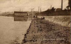 Southampton England, Railroad Tracks, Postcards, Country Roads, History, Places, Photos, Historia, Pictures
