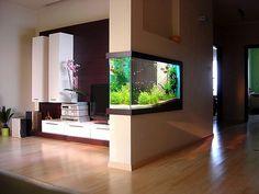 #aquarium #architecture #livingroom #aquascape