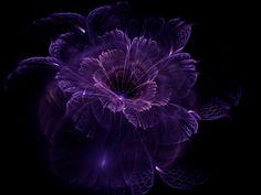 Impalpable Purple Dream by Appareance.deviantart.com on @deviantART