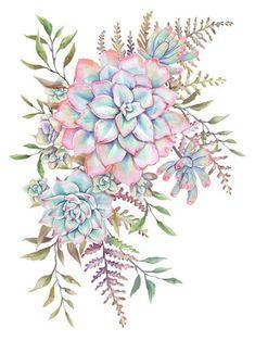 43 Ideas For Watercolor Succulent Tattoo Plants Succulents Wallpaper, Succulents Drawing, Watercolor Succulents, Watercolor Flowers, Watercolor Art, Succulents Art, Planting Succulents, Succulents Painting, Indoor Succulents