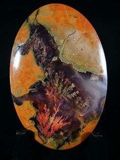incredible plume agate that looks like a coral cavern! Minerals And Gemstones, Rocks And Minerals, Dame Nature, Crystal Magic, Beautiful Rocks, Mineral Stone, Rocks And Gems, Stones And Crystals, Gem Stones