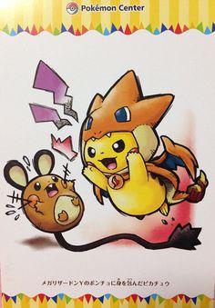 Pikachu Charizard Dedene