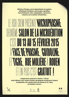 Microphasme 2015 / Julien Lelièvre