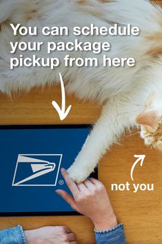 Reward yourself with a package pickup from home once you've hand-crafted your gifts. 🎁 Schedule a package pickup with USPS.