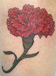 I want this carnation tattoo in pink.In memory of my mom. January was her birth month and pink was her favorite color. Also, I might minus the stem.