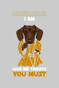 Everything we adore about the Curious Dachshund Pup Dachshund Art, Dachshund Gifts, Funny Dachshund, Dachshund Puppies, Funny Dogs, Cute Puppies, Cute Dogs, Dachshund Quotes, Lab Puppies