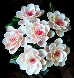 Sea shell flowers