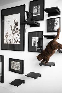 6/ Un arbre à chat mural et à plusieurs paliers Votre félin a beaucoup d'énergie à dépenser et il adore s'installer sur vos meubles surélevés ? Grâce à ce projet, vous allez faire d'une pierre deux coups ! On vous propose tout simplement de poser plusieurs tablettes à hauteurs différentes sur votre mur, qu'il soit …