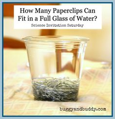 Experiment:  How many paperclips can fit in a full glass of water?