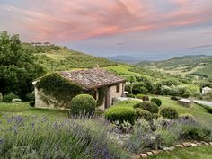 Italy's Best Kept Secret: Umbria – SWITZERLAND Umbria Italy, Tuscany, Outdoor Swimming Pool, Swimming Pools, Moving To Italy, Best Kept Secret, Stunning View, Nice View, Beautiful Gardens
