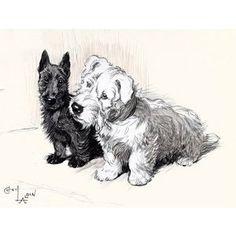 scottie and westie by Cecil Aldin