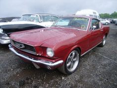 Large inventory of old Mustangs for sale - GT's, Fastbacks, Convertibles. Sn95 Mustang, Ford Mustang Fastback, 66 Mustang For Sale, Project Cars For Sale, 1967 Shelby Gt500, Custom Muscle Cars, Classic Mustang, Chevy Chevelle, Ac Cobra
