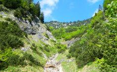 Gipfeltrilogie im Lattengebirge: Karkopf, Törlkopf, Karspitz - Berchtesgadener Land Blog