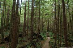 alava-cape-trail-4.jpg 1536×1024 pixels