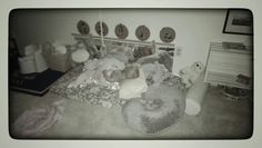 Montessori Infant room...infant/ toddler floor bed...her first pillow...one year old! Www.littleorchardmontessori.com