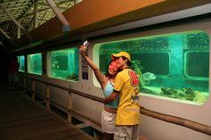 Sefie na Ilha dos aquarios