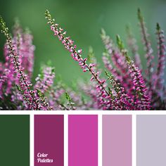 Color Palette #2945 | Color Palette Ideas | Bloglovin'