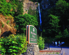 Multnomah Falls is a popular stop to stretch the legs Multnomah Falls, River Trail, Central Oregon, Columbia River, Outdoor Events, Summer Travel, Road Trip, California, American