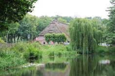 4573 Marmstorfer Feuerlöschteich - Reetdach eines Bauernhauses im Hintergrund - Weiden mit ins Wasser hängenden Zweigen am Ufer des Dorfteiches. | von christoph_bellin