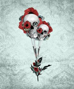 Evolution of poppies.  Art Print by Kristy Patterson Design