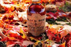 Time for a nice frolic in the leaves. #fall #blackdirtdistillery