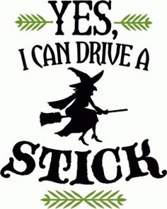 Silhouette Design Store - View Design #67624: i can drive a stick - phrase