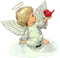 Little angel holding a red little bird!
