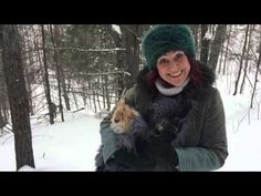 Snowshoeing with a small dog