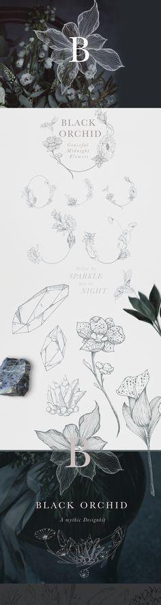 Black Orchid Floral Illustrations by Laras Wonderland on @creativemarket