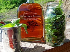 Mint Simple Syrup Infusion for Mint Julep Recipe