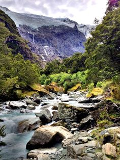 Mount Aspiring National Park, Mt Aspiring National Park, New Zealand — by Linsey Amundson. Rob Roy Glacier hike in Mt Aspiring National Park. About an hour past Wanaka, down a gravel road with sheep traffic...