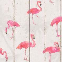 Papel pintado imitación madera con flamenco rosa PDW9479720-24 imágenes