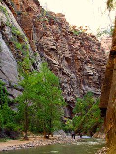 Travelling Utah in a Campervan - Zion National Park