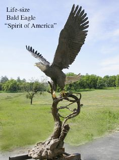 Spirit-of-america-bald-eagle-bronze-monument.image
