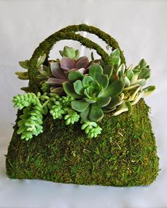 Acutally got mom one of these for Easter filled with Pansies...........adorb!!!! They had high heels too filled with flowers