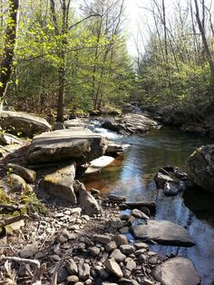 Pocono Mountains, from scenic creeks to hills and forests.