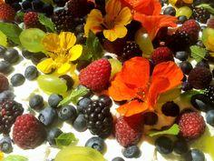 kwiaty i owoce z naszego ogrodu