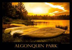 Sunset, lake in Algonquin Park, Ontario, Canada, Roberto Portolese.