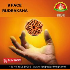 Nine Mukhi Rudraksha removes the Kaal Sarp Yog effect from the wearer's life and it makes the person confident, charming, fearless and dynamic..  Order online now from sri sai pooja samagri  Visit: www.srisaipoojasamagri.com or Call us @ +91 40 3016 5900  #Rudraksha #Deep #Lakshmi #Statue #brass #GomatiChakra #DailyPooja #Devotion #Poojaitems #festivecollection #BrassNataraja #srisaipoojasamagri #devotional #Spiritual Confident, Spiritual, Brass, Deep, Statue, Stuff To Buy, Life, Copper, Sculpture