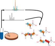#ACIE Combined Analysis of NMR and MS Spectra (CANMS) #MassSpec