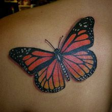 Brilliant Tattoo Designs With Meaning For Men And Women. Realistic Tattoo Ideas Made By Famous Artist In The World. Share These Amazing Tattoos Wit Monarch Butterfly Tattoo, Butterfly Tattoos Images, Butterfly Tattoo On Shoulder, Butterfly Tattoo Designs, Shoulder Tattoo, Semicolon Butterfly, Butterfly Hair, Best 3d Tattoos, Trendy Tattoos